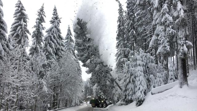 Отмениха полети в Германия заради снега