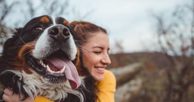 Собствениците на кучета живеят по-дълго, показват две нови изследвания, цитирани