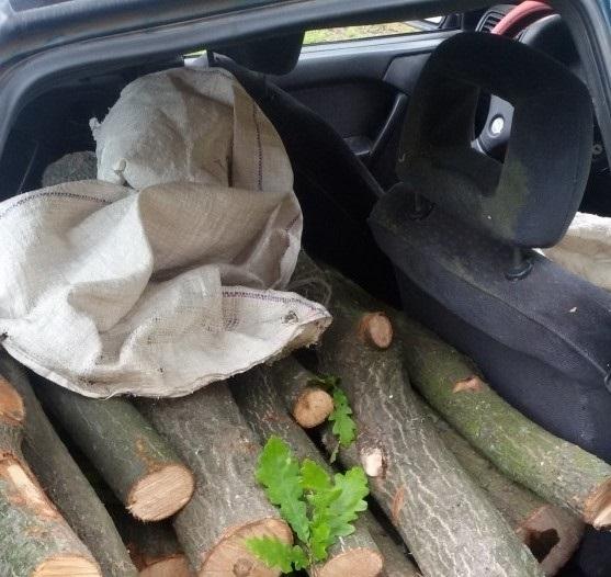 Полицаи са заловили неправоспособен мъж, превозвал с колата синезаконни дърва