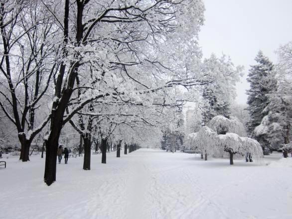 Днес ще продължи да вали сняг, температурите ще са между -14° и - 9°