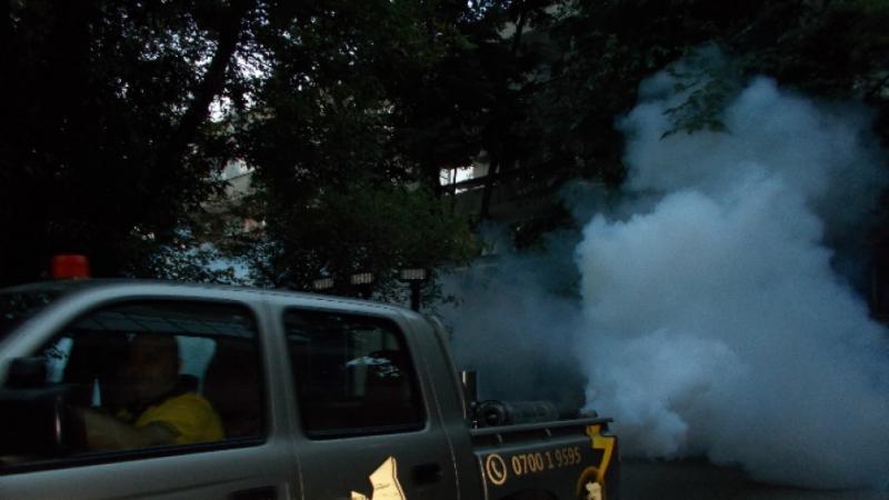 Продължава пръскането срещу комари във Видин