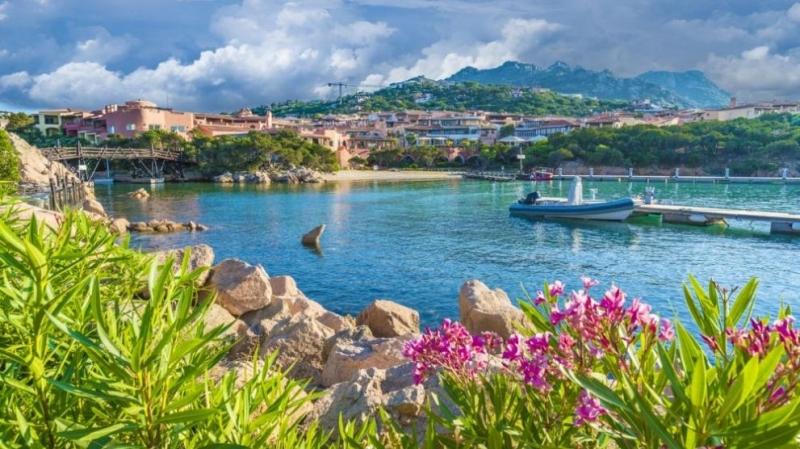 Нашествие на милиони скакалци в центъра на италианския остров Сардиния
