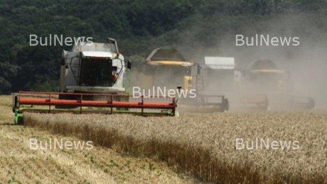 """Дирекциите """"Земеделие"""" във Враца и Монтана с нарушения и щети за 40 000 лева"""