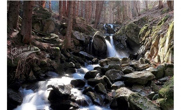 Две реки потекоха в черно в района на Старосел, рибата измря