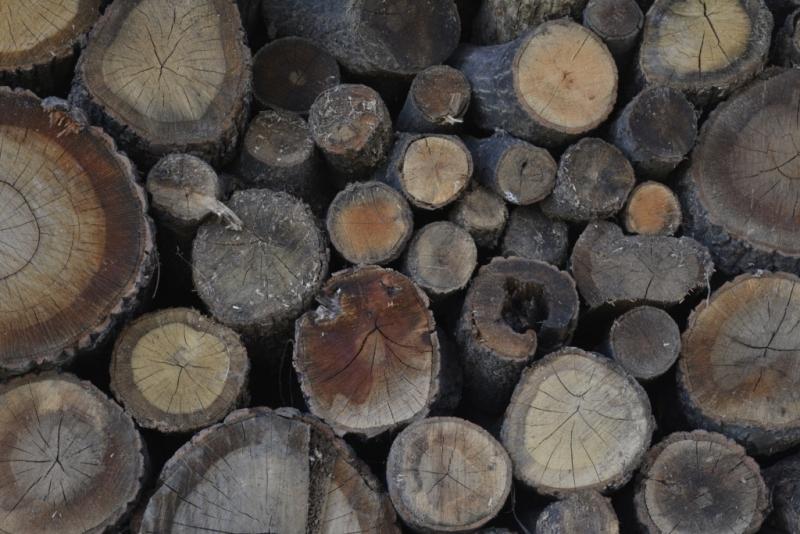 Крадени дърва са намерили полицаи в двора на къща във