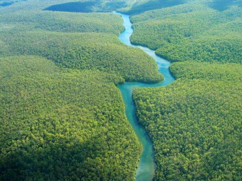 Снимка: Норвегия блокира милиони за Бразилия заради обезлесяването в Амазония