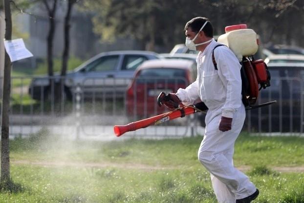 Днес започва пръскането срещу кърлежи и бълхи във Вършец, съобщиха