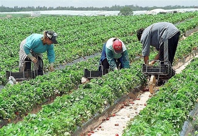Вижте какво казва Кодексът на труда за трудовия стаж, натрупан в друга държава