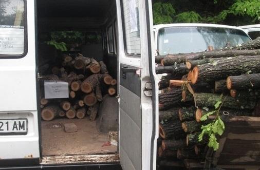 Полциията е заловила двама криминално проявени да товарят незаконни дърва