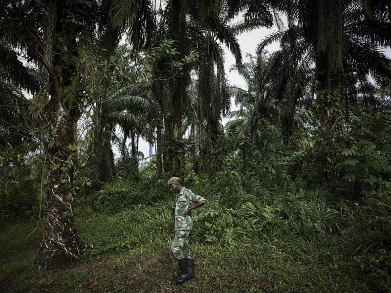 Най-малко 50 загинали при инцидент с влак в Конго
