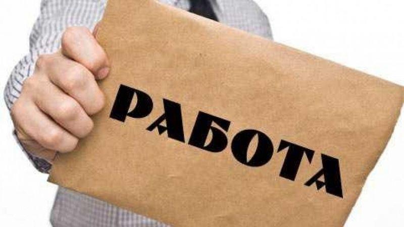 """Областните дирекции """"Бюро по труда"""" в Северозапада обявиха всички свободни"""