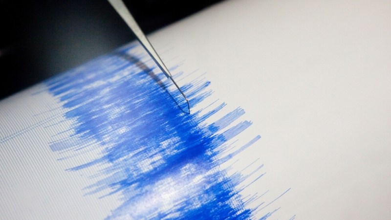 Земетресение от 5.6 по Рихтер удари южната част на Иран.