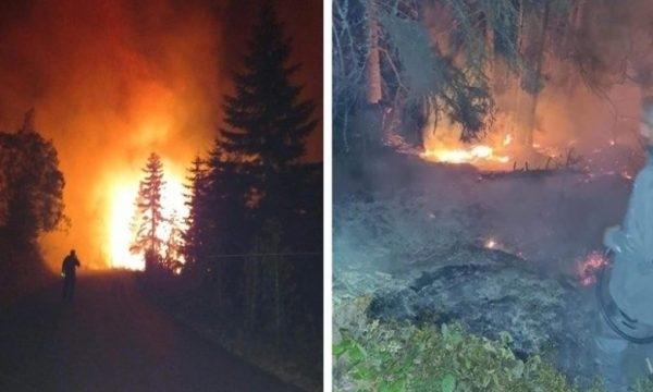 Силен пожар край косовския град Печ буди тревога, огънят се