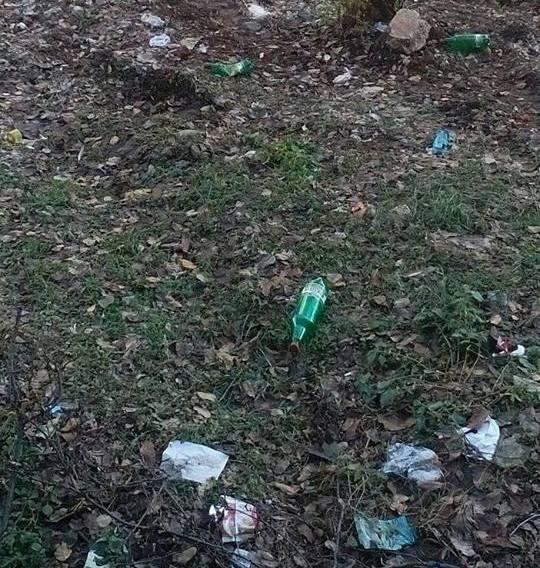 Потресена монтанчанка скочи на свои съграждани заради сметище, което са