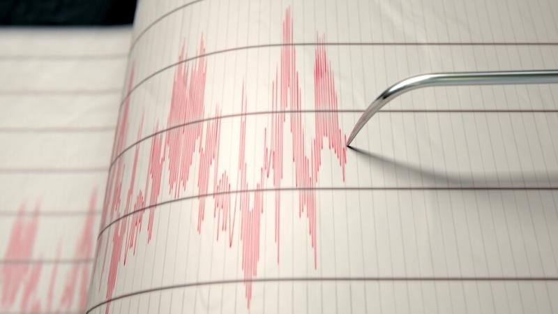 Земетресение от 6.2 по Рихтер разтърси тази сутрин индийския щат