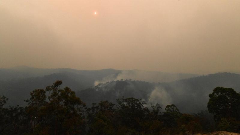 Токсичен облак дим от горските пожари, бушуващи в Австралия, достигна