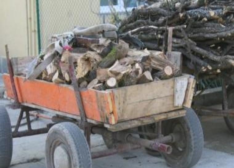 Полицаи задържаха три каруци с незаконна дървесина на 20-ти октомври