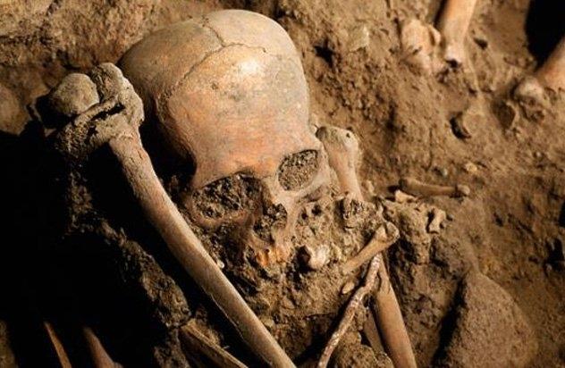 Зловеща находка шашна жена във Видинско вчера. Тя намерила останки