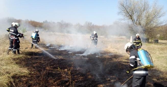 Пожар избухна в района на Лагониси, разположена в областта Атика,
