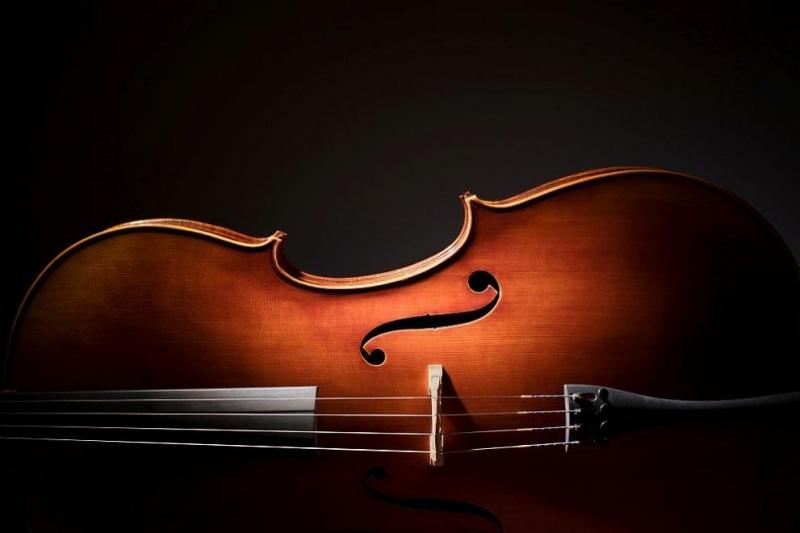 Откраднатото наскоро в района на Париж виолончело от 18-и век,