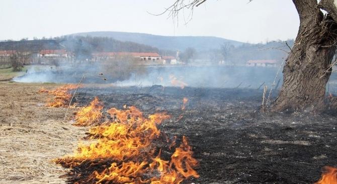 Солени глоби грозят стопани в региона заради запалени стърнища, съобщиха