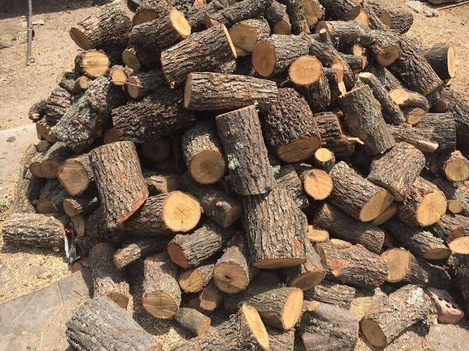 Пет кубика незаконни дърва иззели служители на реда от Видинско.
