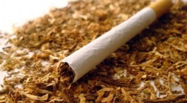 1 кг нарязан тютюн без бандерол, разпределен в пет пакета,