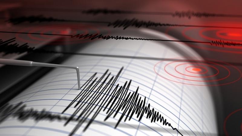 Днес в 4.11 часа българско време е регистрирано земетресение, с