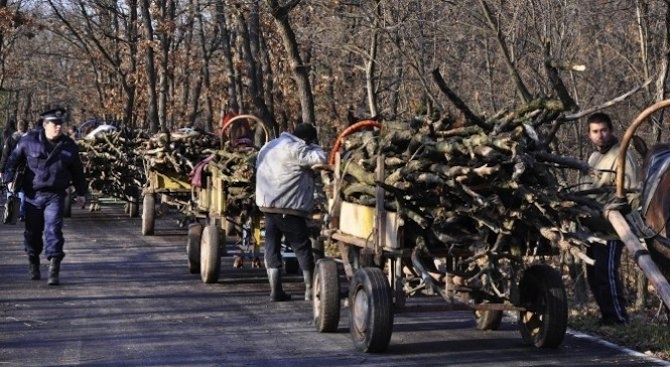 Служители на реда са извършили проверки за незаконни дърва за