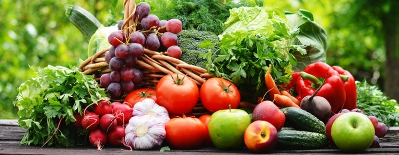 Биохраните на българския пазар са с много добро качество, каза