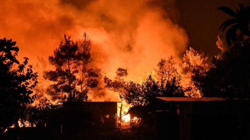 Снимка: Нов пожар се разгоря на гръцкия остров Евия