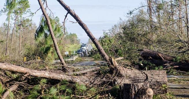 """15 000 домовеостанаха без ток вПортугалия, след катоураганът""""Лесли"""" премина през"""