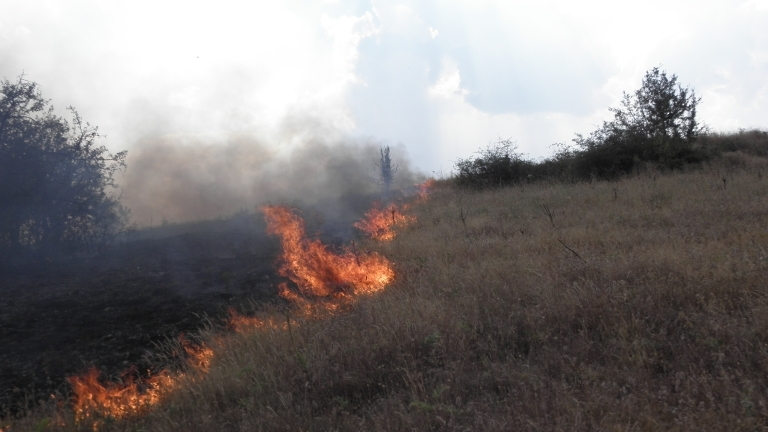 """От регионалната дирекция """"Пожарна безопасност и защита на населението"""" напомнят"""