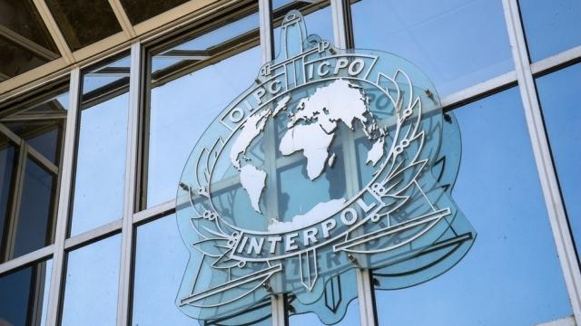 Интерпол спаси 89 жертви на трафик на хора при операция на Балканите