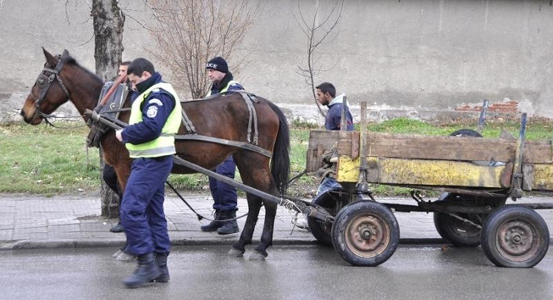 Цигани с каруца са нахлули в частен имот с цел