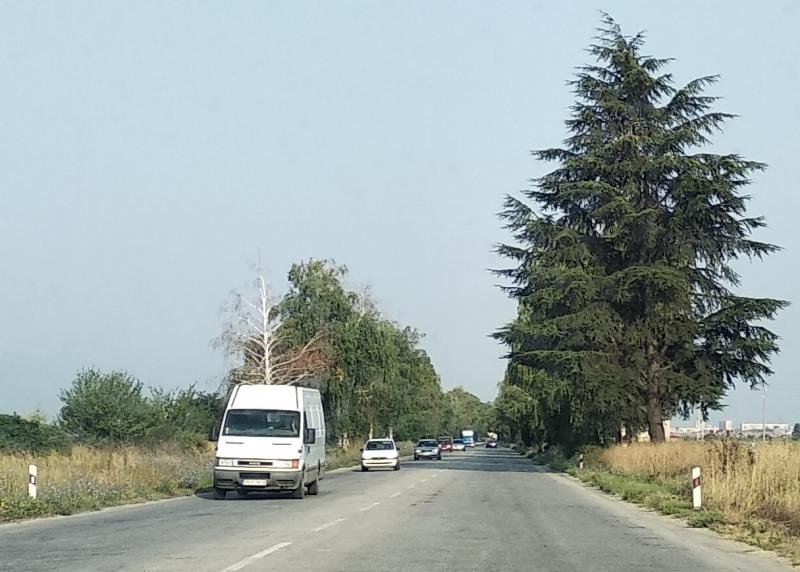 Движението по пътя Видин-Кула-Връшка чука е ограничено поради укрепване на
