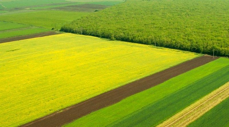 """""""Ставен"""" може да купи вашата земя на най-добра цена и да подготви всички документи"""
