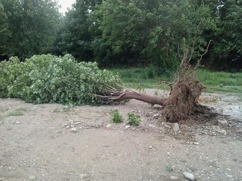 Мощна буря удари Монтана и нанесе огромни щети, научи агенция