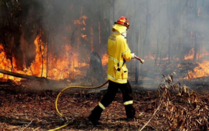 От Община Борован обявиха мерките за предпазване от пожари в