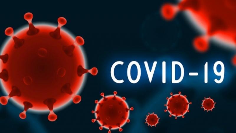 Продължава тестването за наличието на COVID-19 в област Враца, съобщиха