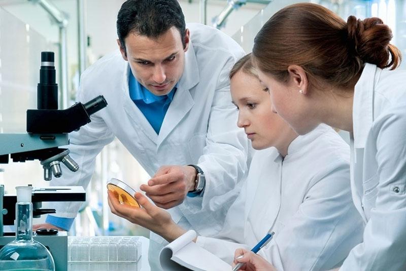 Нова надежда за лечение на ракови заболявания дава клетка, открита