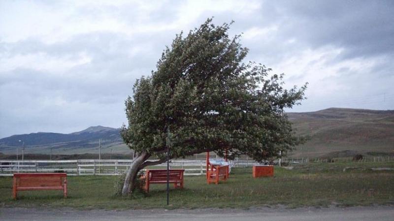 Най-силен е бил вятърът днес по обяд в района на