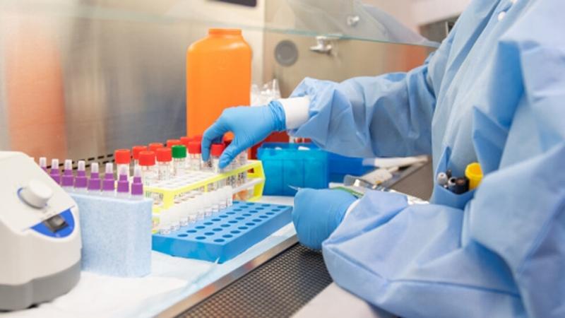174 са новите случаи на коронавирус за последното денонощие у