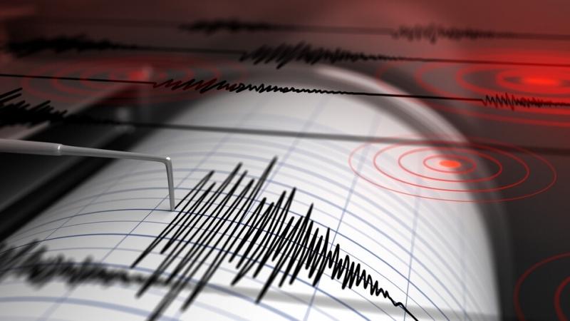 Земетресение от 5 по Рихтер е регистрирано край бреговете на