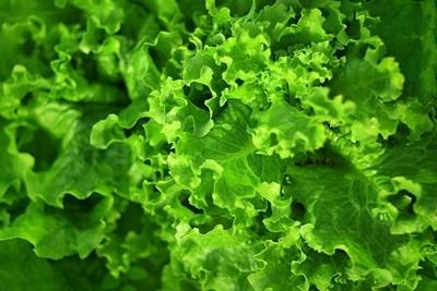 Консумацията на зелени листни зеленчуци помага за контролиране на нивата