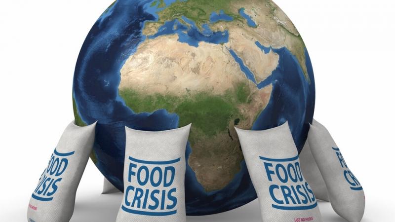 Има опасност масовата карантина по света да предизвика криза за