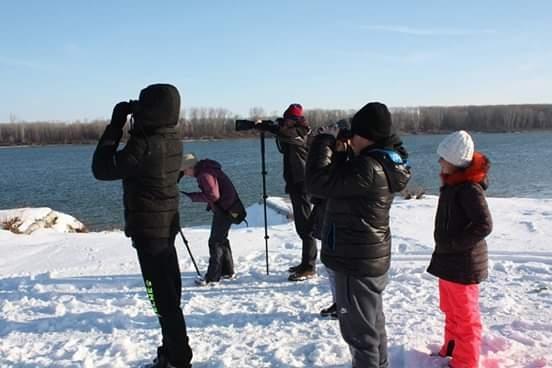 Снимка: Експерти и доброволци от община Козлодуй броиха зимуващите птици по Дунав и Огоста