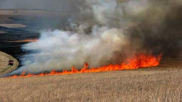 Запалиха нива на Ценко Чоков в белослатинското село Галиче, научи