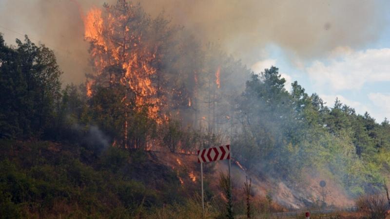 Високорискова остава обстановката в Свиленград, заради големият горски пожар, предаде