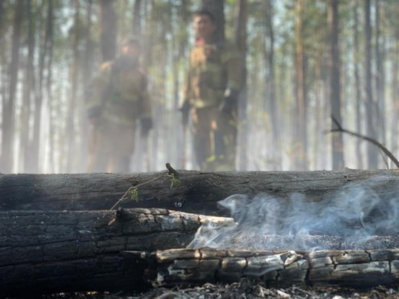 Големите горски пожари в Сибир достигнаха околностите на руски градове